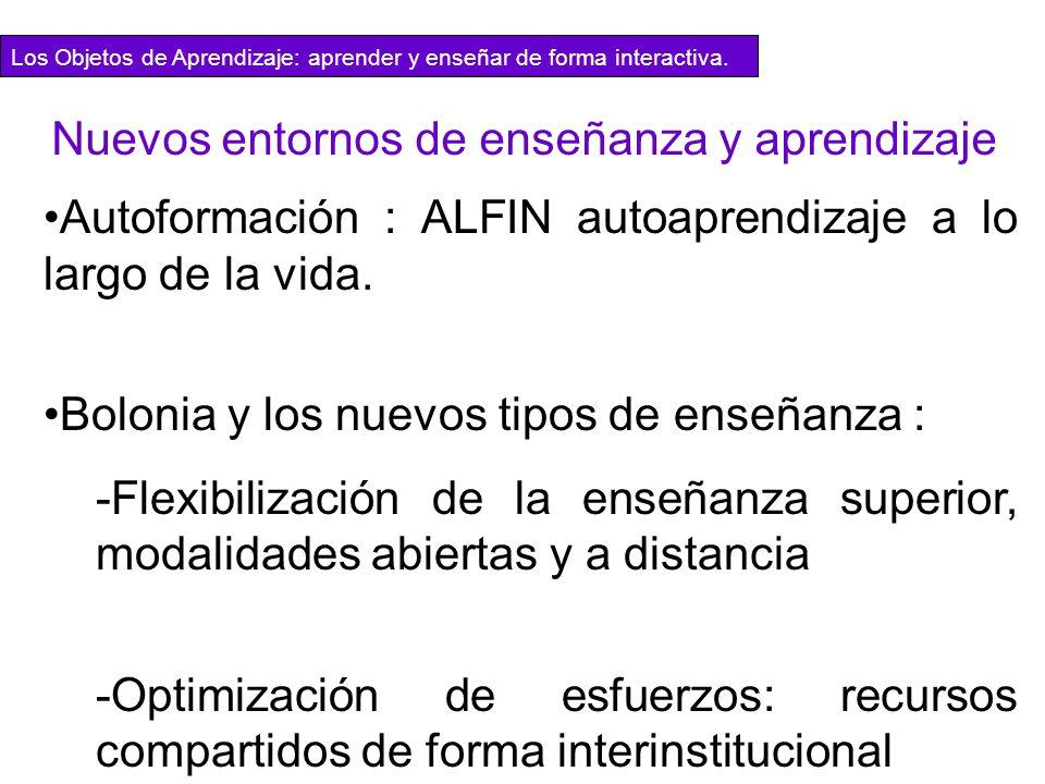 Autoformación : ALFIN autoaprendizaje a lo largo de la vida. Bolonia y los nuevos tipos de enseñanza : -Flexibilización de la enseñanza superior, moda
