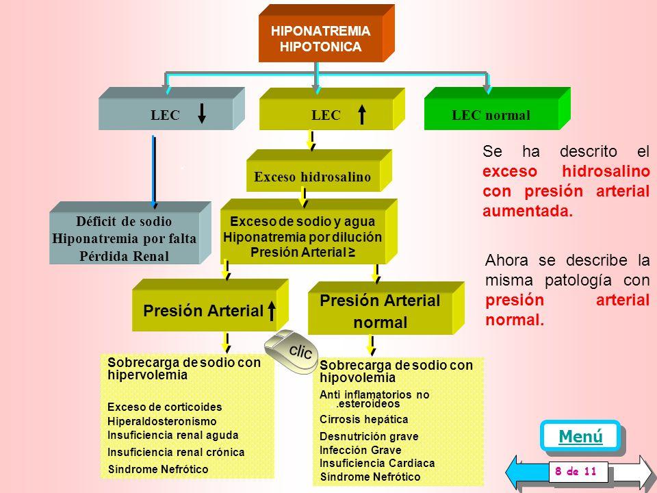 En la pantalla anterior se describió la Hiponatremia Hipotónica que se desarrolla con volumen de Líquido Extracelular (LEC) disminuido.