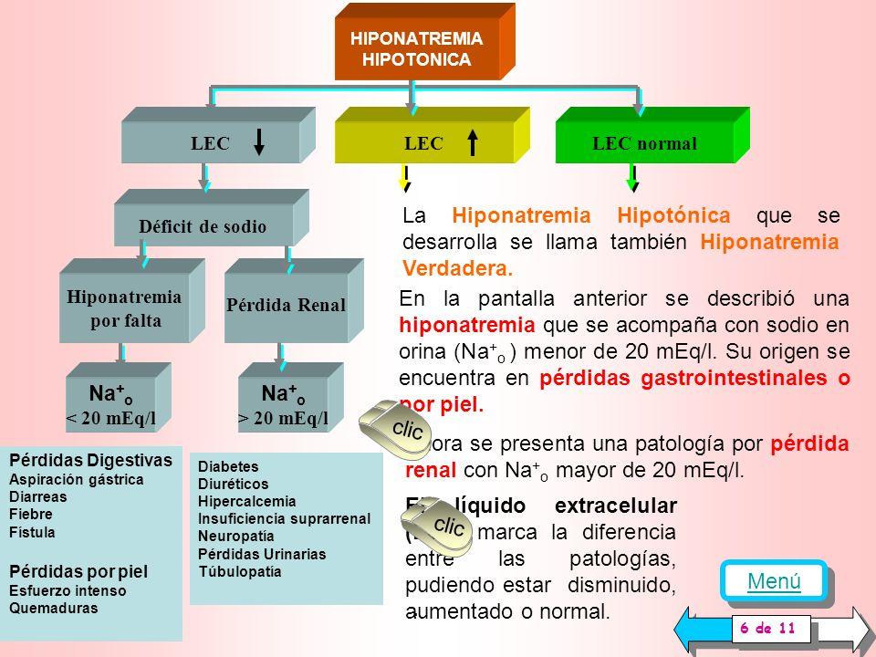 LEC normal La Hiponatremia Hipotónica que se desarrolla a partir de esta pantalla se llama también Hiponatremia Verdadera.