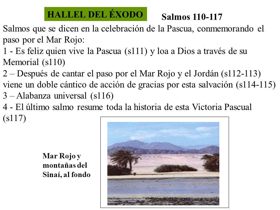 HALLEL DEL ÉXODO Salmos 110-117 Salmos que se dicen en la celebración de la Pascua, conmemorando el paso por el Mar Rojo: 1 - Es feliz quien vive la P