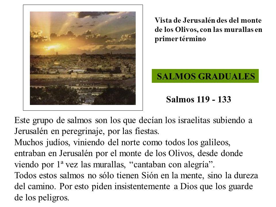 SALMOS GRADUALES Salmos 119 - 133 Este grupo de salmos son los que decían los israelitas subiendo a Jerusalén en peregrinaje, por las fiestas. Muchos