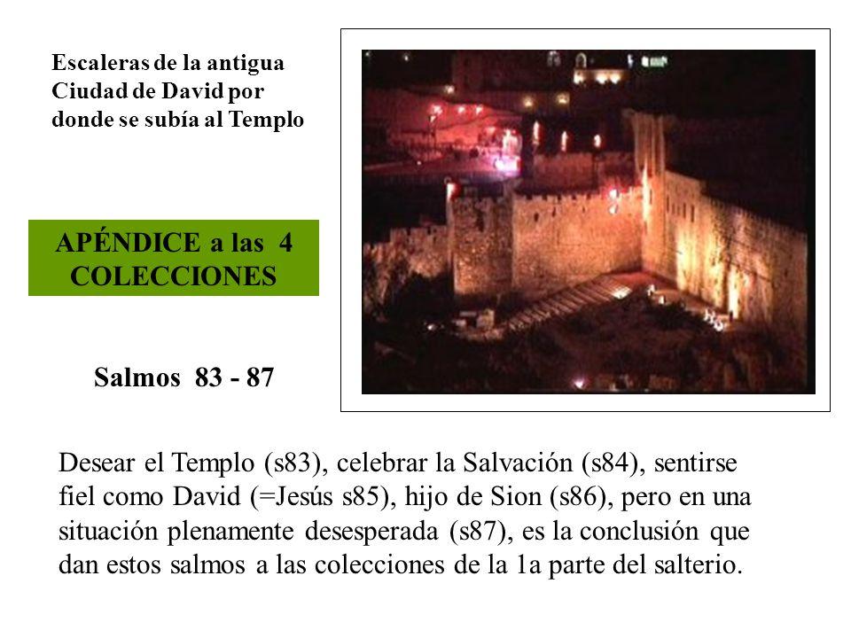 Salmos 83 - 87 APÉNDICE a las 4 COLECCIONES Desear el Templo (s83), celebrar la Salvación (s84), sentirse fiel como David (=Jesús s85), hijo de Sion (