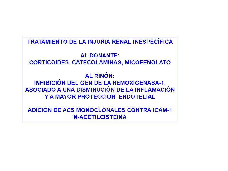 TRATAMIENTO DE LA INJURIA RENAL INESPECÍFICA AL DONANTE: CORTICOIDES, CATECOLAMINAS, MICOFENOLATO AL RIÑÓN: INHIBICIÓN DEL GEN DE LA HEMOXIGENASA-1, A
