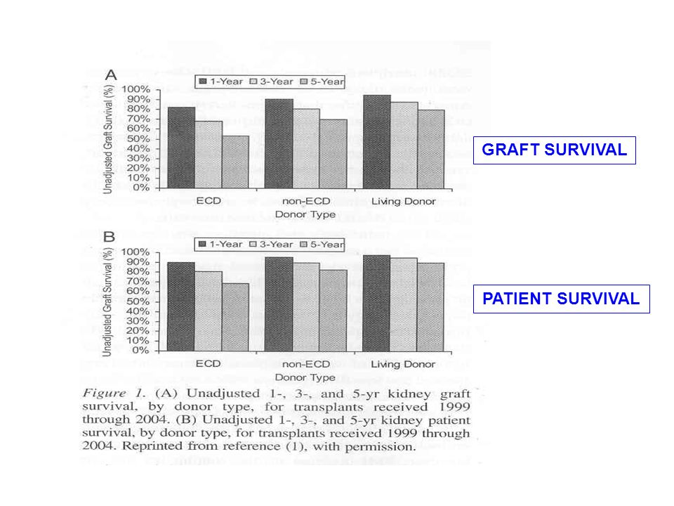 GRAFT SURVIVAL PATIENT SURVIVAL