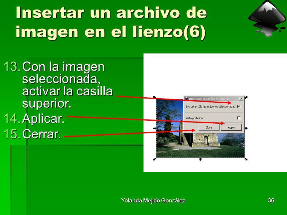 Yolanda Mejido González36 Insertar un archivo de imagen en el lienzo(6) 13.Con la imagen seleccionada, activar la casilla superior. 14.Aplicar. 15.Cer