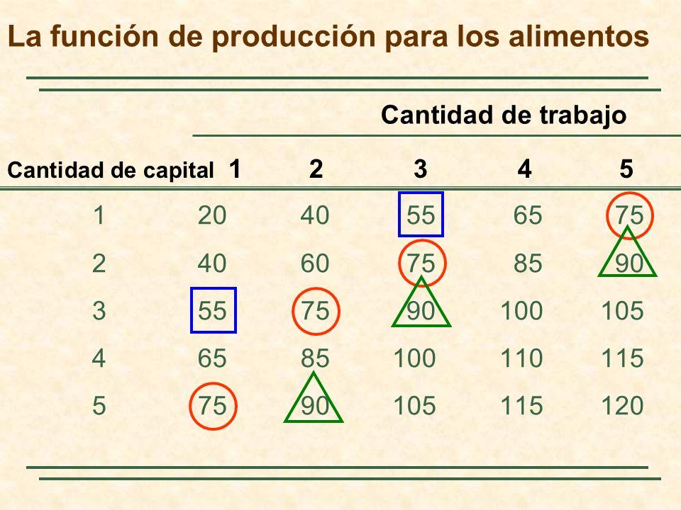 La función de producción para los alimentos 12040556575 24060758590 3557590100105 46585100110115 57590105115120 Cantidad de capital 1 2 3 4 5 Cantidad