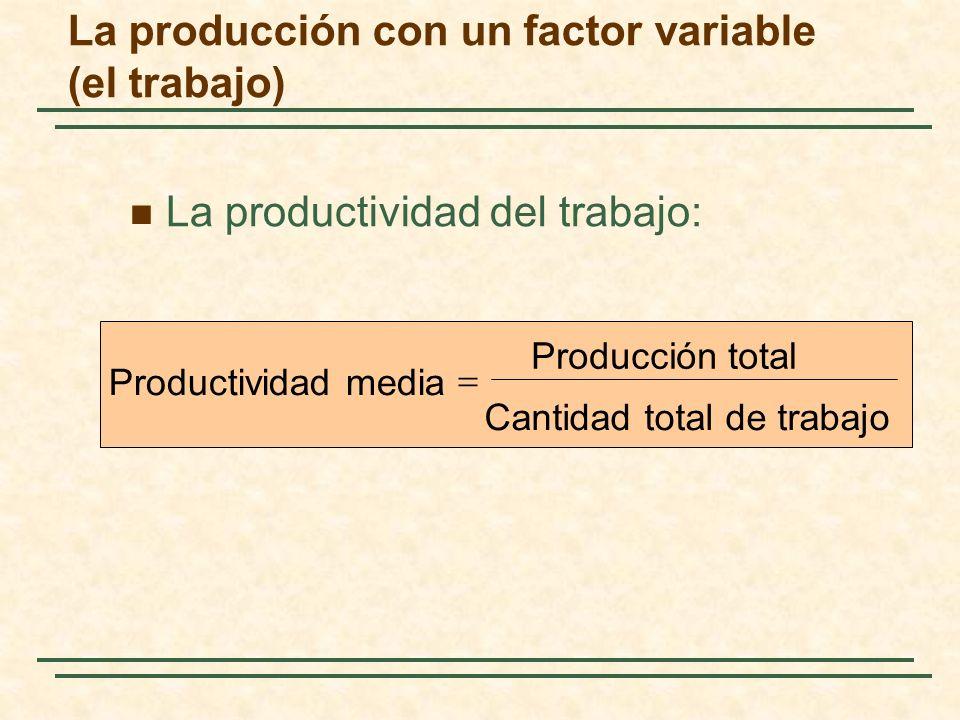 La productividad del trabajo: La producción con un factor variable (el trabajo) Cantidad total de trabajo Producción total Productividad media