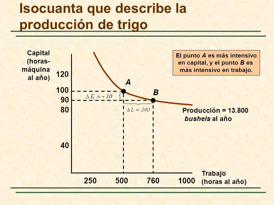 Isocuanta que describe la producción de trigo Trabajo (horas al año) Capital (horas- máquina al año) 2505007601000 40 80 120 100 90 Producción = 13.80