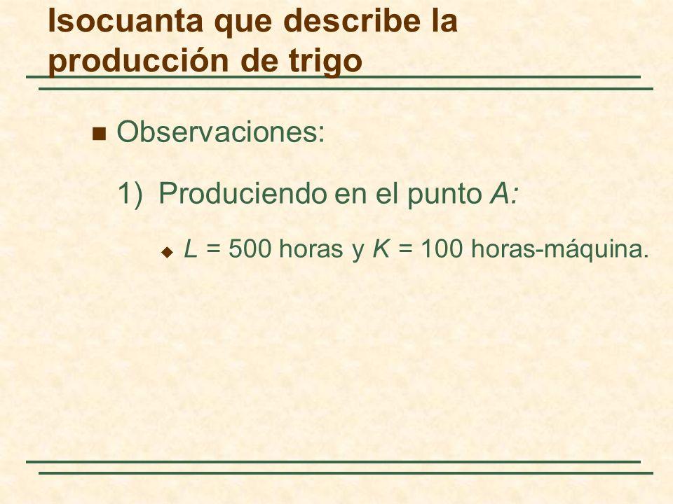 Observaciones: 1)Produciendo en el punto A: L = 500 horas y K = 100 horas-máquina. Isocuanta que describe la producción de trigo