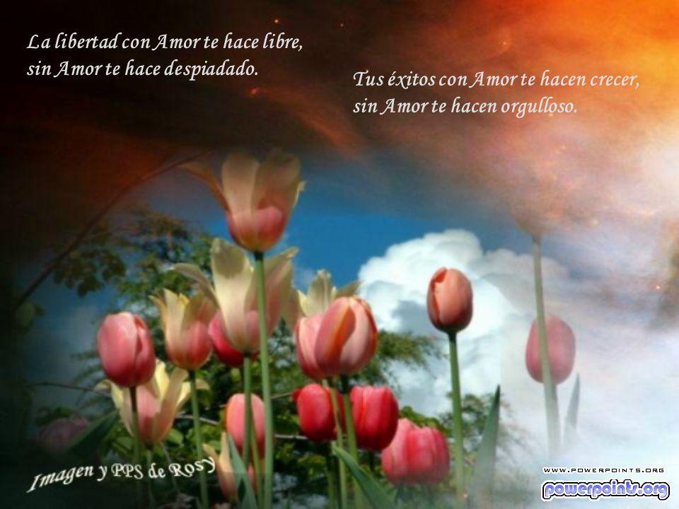La libertad con Amor te hace libre, sin Amor te hace despiadado.