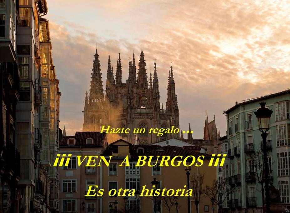 Ven a visitar las tierras del Cid, cargadas de historia …