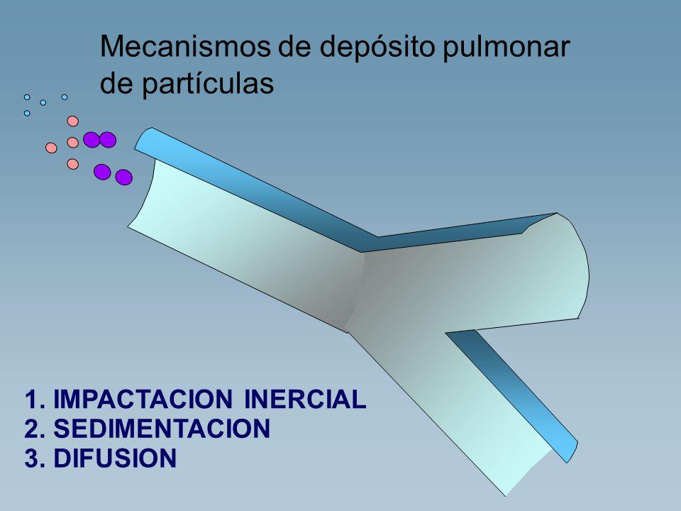 Mecanismos de depósito pulmonar de partículas 1. IMPACTACION INERCIAL 2. SEDIMENTACION 3. DIFUSION