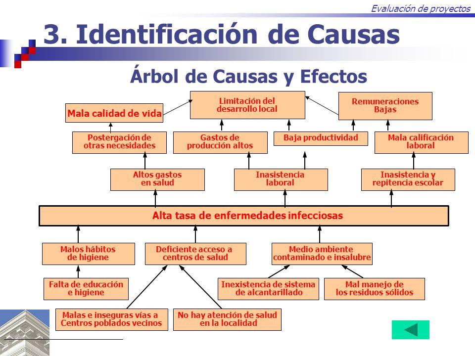 evaluacion de proyectos chile: