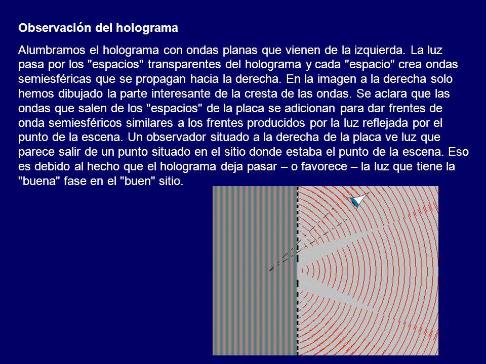 Observación del holograma Alumbramos el holograma con ondas planas que vienen de la izquierda. La luz pasa por los
