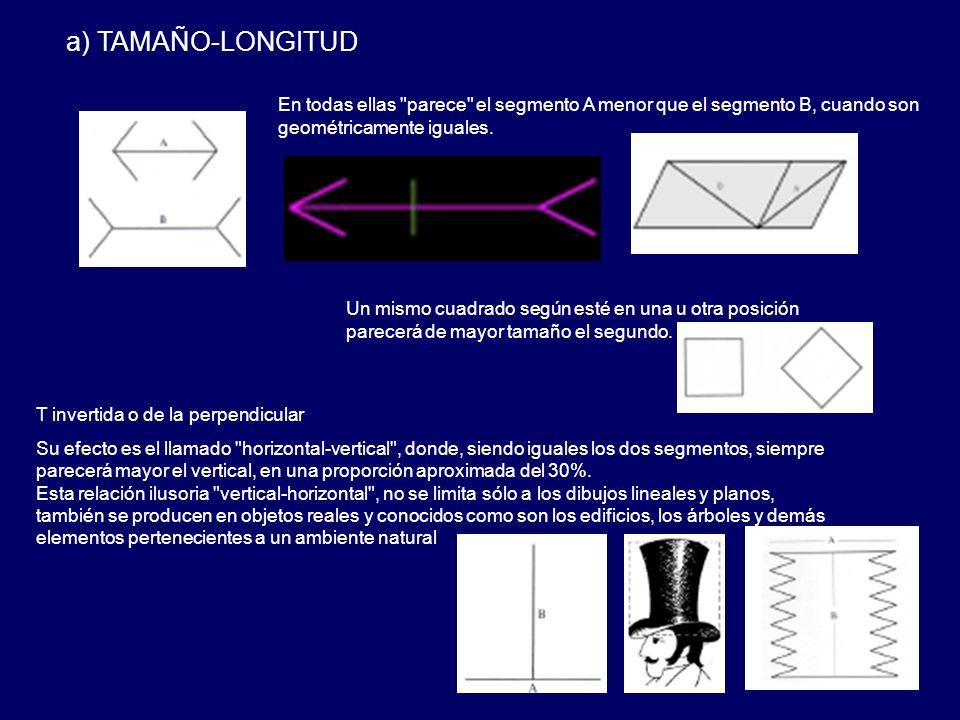 a) TAMAÑO-LONGITUD T invertida o de la perpendicular Su efecto es el llamado horizontal-vertical , donde, siendo iguales los dos segmentos, siempre parecerá mayor el vertical, en una proporción aproximada del 30%.