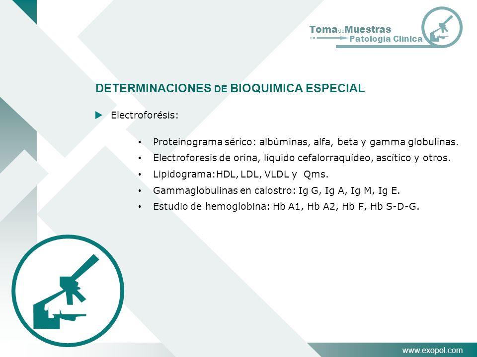 www.exopol.com Toma de Muestras Patología Clínica DETERMINACIONES DE BIOQUIMICA ESPECIAL Electroforésis: Proteinograma sérico: albúminas, alfa, beta y