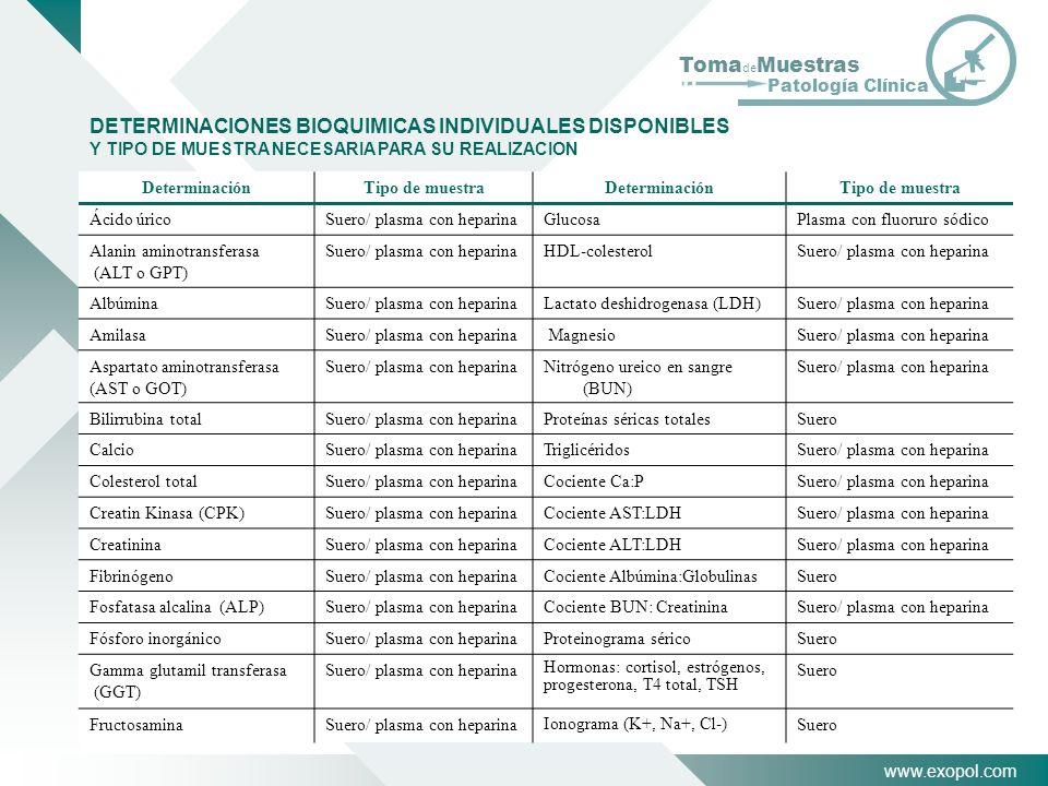 www.exopol.com Toma de Muestras Patología Clínica DETERMINACIONES BIOQUIMICAS INDIVIDUALES DISPONIBLES Y TIPO DE MUESTRA NECESARIA PARA SU REALIZACION