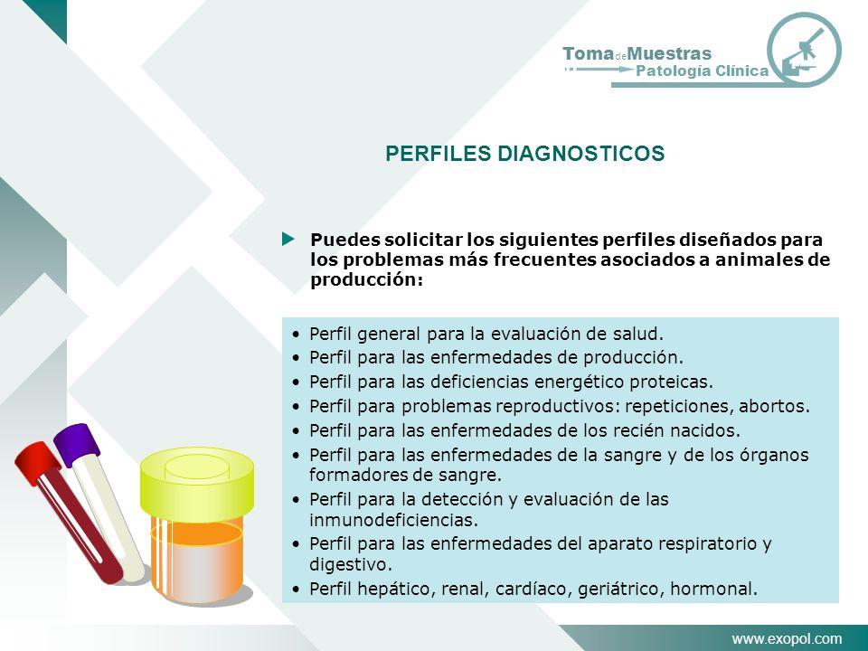 www.exopol.com Toma de Muestras Patología Clínica PERFILES DIAGNOSTICOS Perfil general para la evaluación de salud. Perfil para las enfermedades de pr