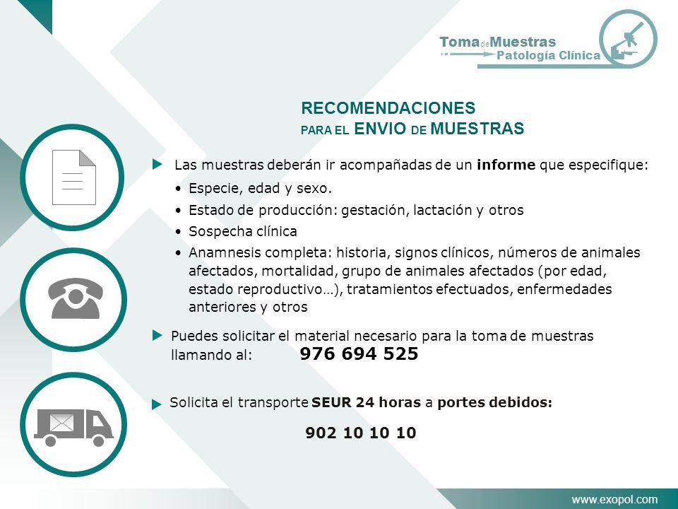 www.exopol.com Toma de Muestras Patología Clínica RECOMENDACIONES PARA EL ENVIO DE MUESTRAS Especie, edad y sexo. Estado de producción: gestación, lac
