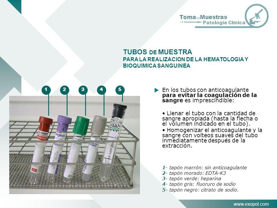 www.exopol.com Toma de Muestras Patología Clínica TUBOS DE MUESTRA PARA LA REALIZACION DE LA HEMATOLOGIA Y BIOQUIMICA SANGUINEA En los tubos con antic