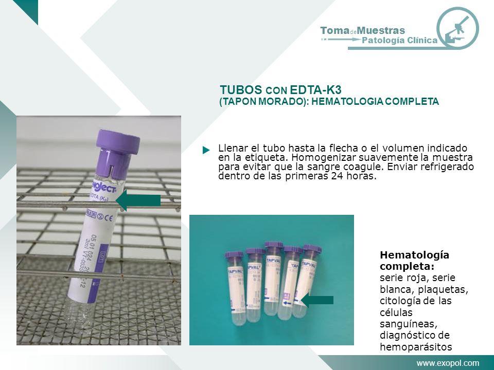 www.exopol.com Toma de Muestras Patología Clínica TUBOS CON EDTA-K3 (TAPON MORADO): HEMATOLOGIA COMPLETA Hematología completa: serie roja, serie blanc