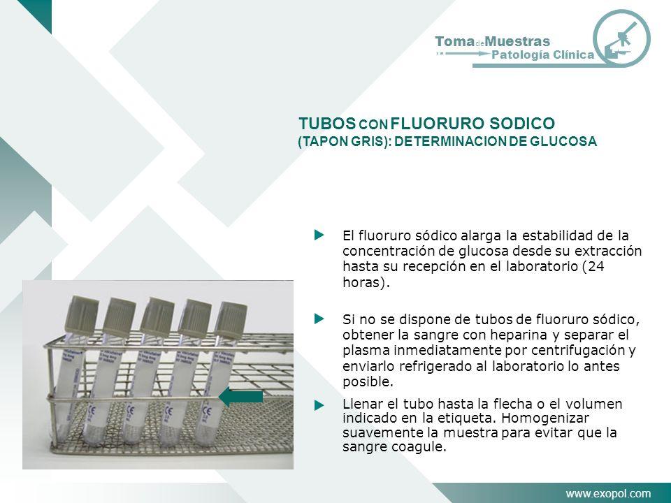 www.exopol.com Toma de Muestras Patología Clínica El fluoruro sódico alarga la estabilidad de la concentración de glucosa desde su extracción hasta su