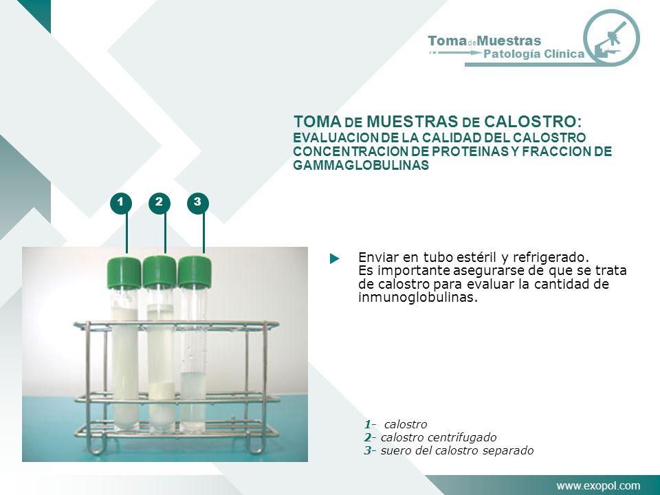 www.exopol.com Toma de Muestras Patología Clínica Enviar en tubo estéril y refrigerado. Es importante asegurarse de que se trata de calostro para eval