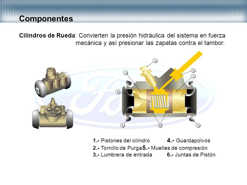 Componentes Cilindros de Rueda: Convierten la presión hidráulica del sistema en fuerza mecánica y así presionar las zapatas contra el tambor. 1.- Pist