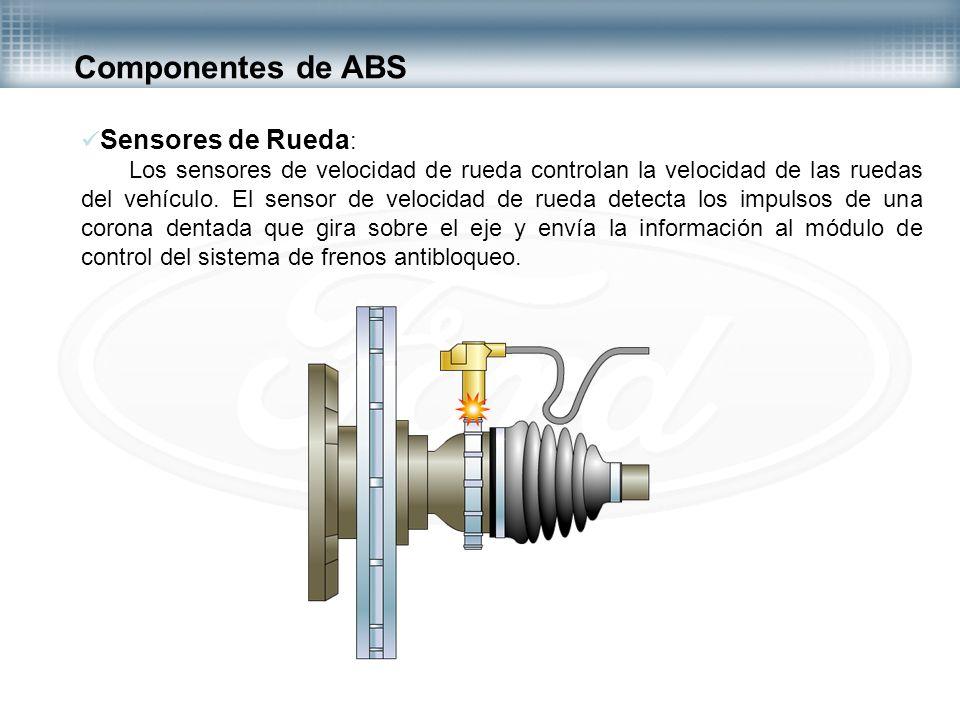 Sensores de Rueda : Los sensores de velocidad de rueda controlan la velocidad de las ruedas del vehículo. El sensor de velocidad de rueda detecta los