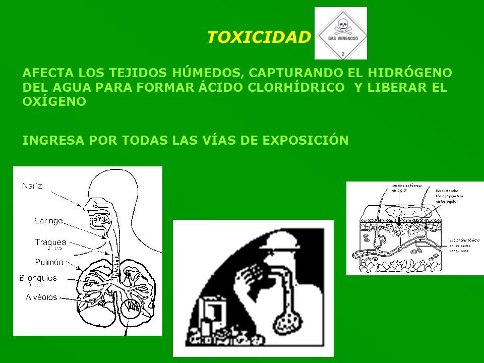 TOXICIDAD AFECTA LOS TEJIDOS HÚMEDOS, CAPTURANDO EL HIDRÓGENO DEL AGUA PARA FORMAR ÁCIDO CLORHÍDRICO Y LIBERAR EL OXÍGENO INGRESA POR TODAS LAS VÍAS DE EXPOSICIÓN