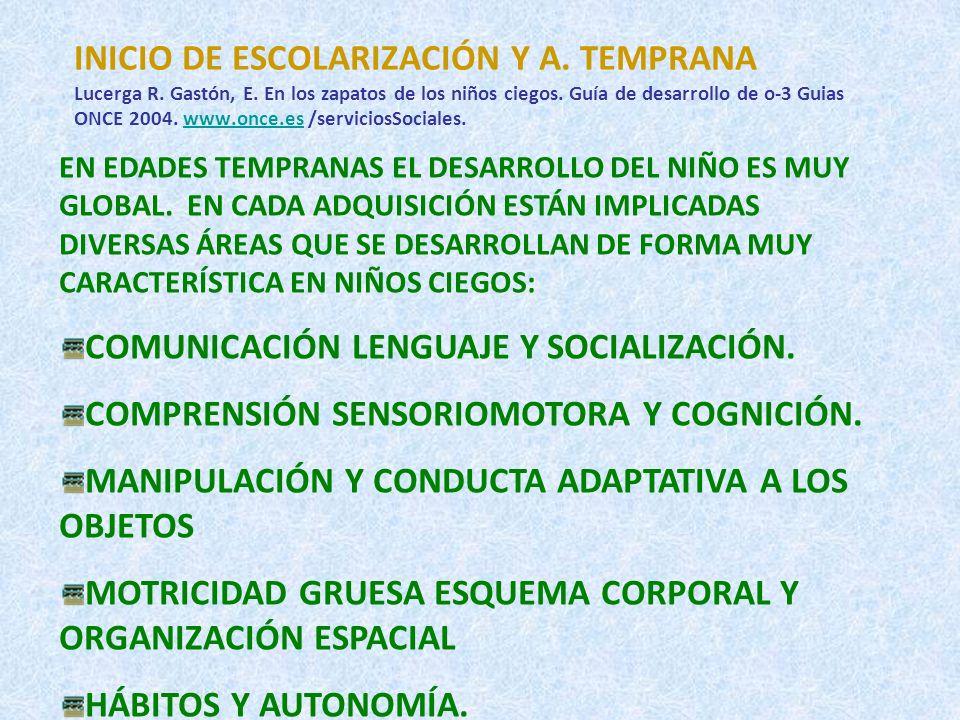 INICIO DE ESCOLARIZACIÓN Y A.