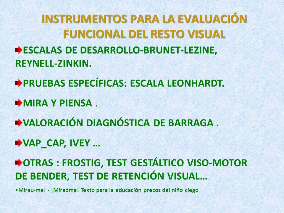 INSTRUMENTOS PARA LA EVALUACIÓN FUNCIONAL DEL RESTO VISUAL (I) VALORACIÓN DIAGNÓSTICA DE BARRAGA LA ESCALA DE EFICIENCIA VISUAL, DE NATALIE BARRAGA.