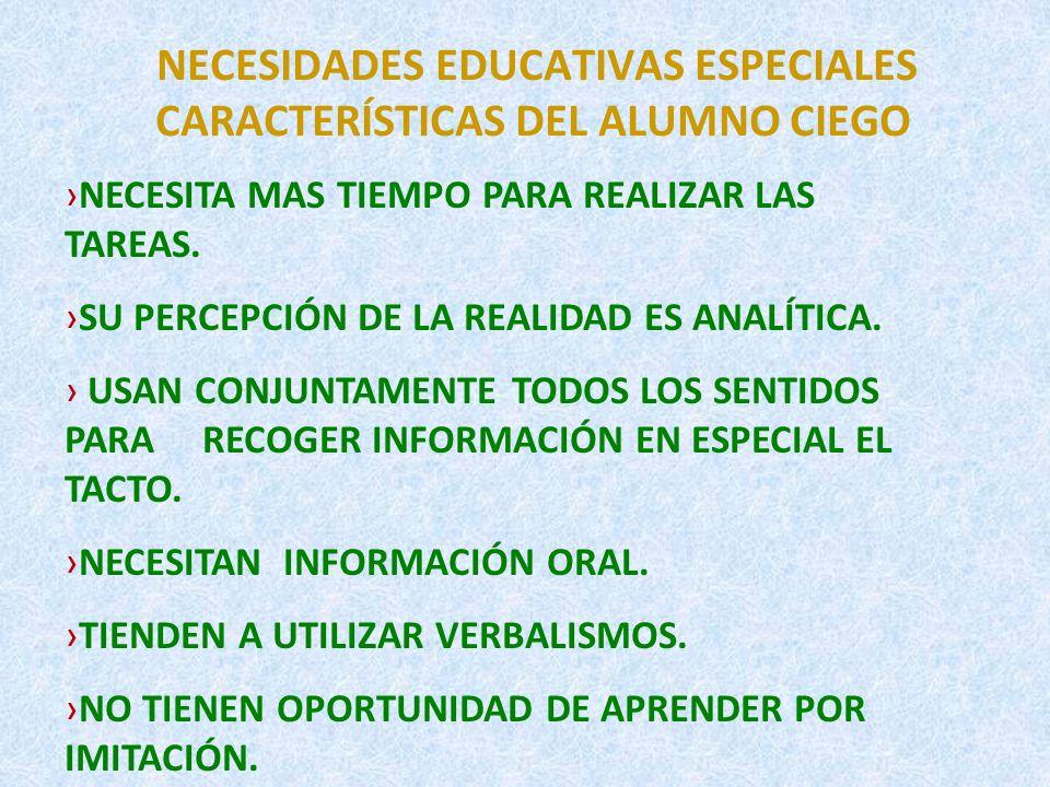 NECESIDADES EDUCATIVAS ESPECIALES ¿CÓMO APRENDE EL ALUMNO CIEGO.