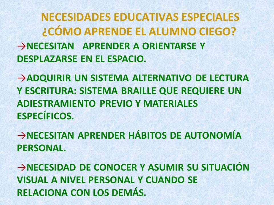 PRINCIPIOS METODOLÓGICOS.