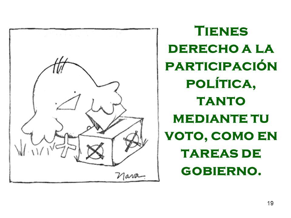 19 Tienes derecho a la participación política, tanto mediante tu voto, como en tareas de gobierno.