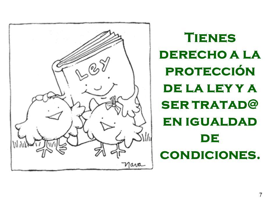 7 Tienes derecho a la protección de la ley y a ser tratad@ en igualdad de condiciones.