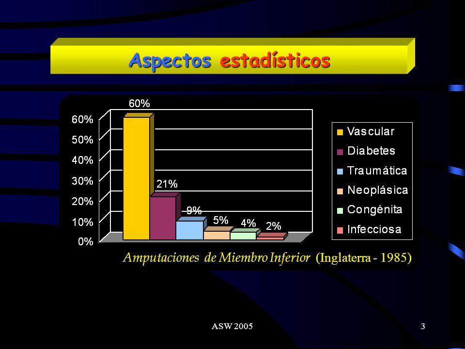 ASW 20053 Amputaciones de Miembro Inferior (Inglaterra - 1985) Aspectos estadísticos
