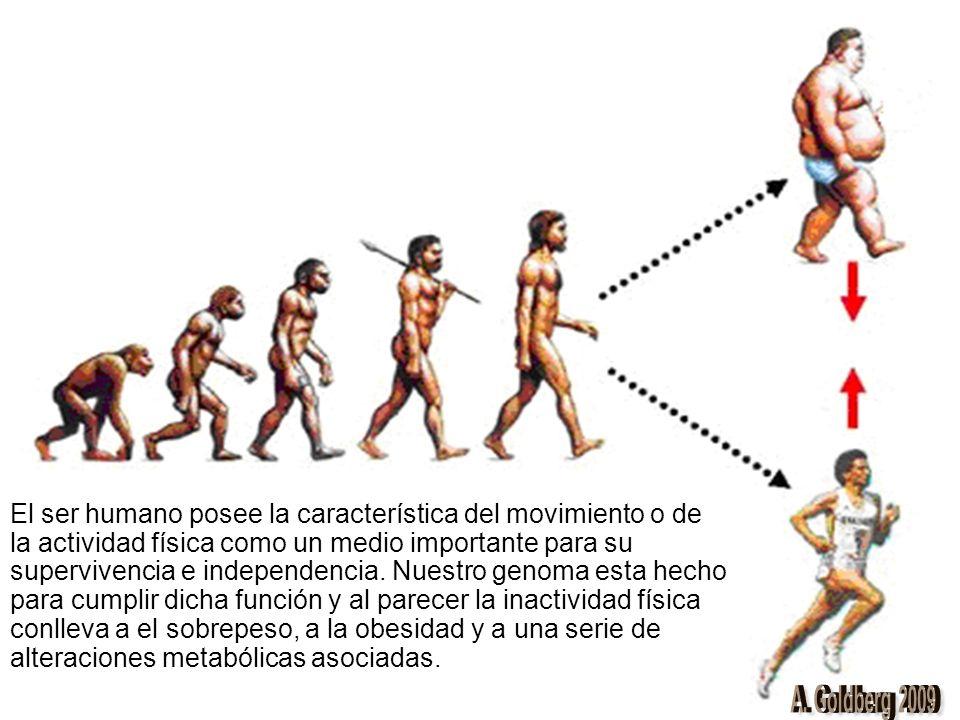 El ser humano posee la característica del movimiento o de la actividad física como un medio importante para su supervivencia e independencia. Nuestro