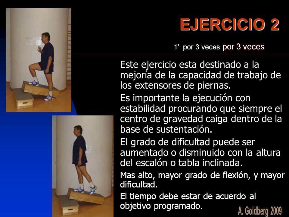 EJERCICIO 2 Este ejercicio esta destinado a la mejoría de la capacidad de trabajo de los extensores de piernas. Es importante la ejecución con estabil