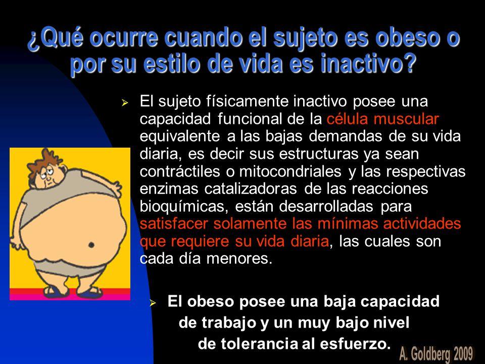 ¿Qué ocurre cuando el sujeto es obeso o por su estilo de vida es inactivo? El sujeto físicamente inactivo posee una capacidad funcional de la célula m