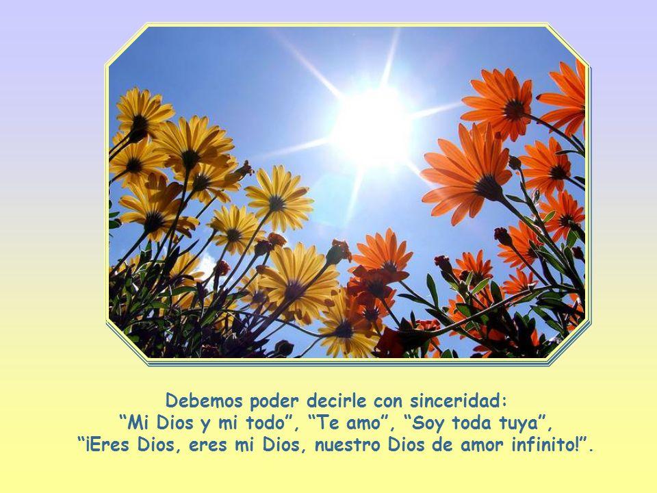 Elegir nuevamente a Dios como único ideal, como el todo de nuestra vida, volverlo a poner en el primer lugar y vivir con perfección su voluntad en el