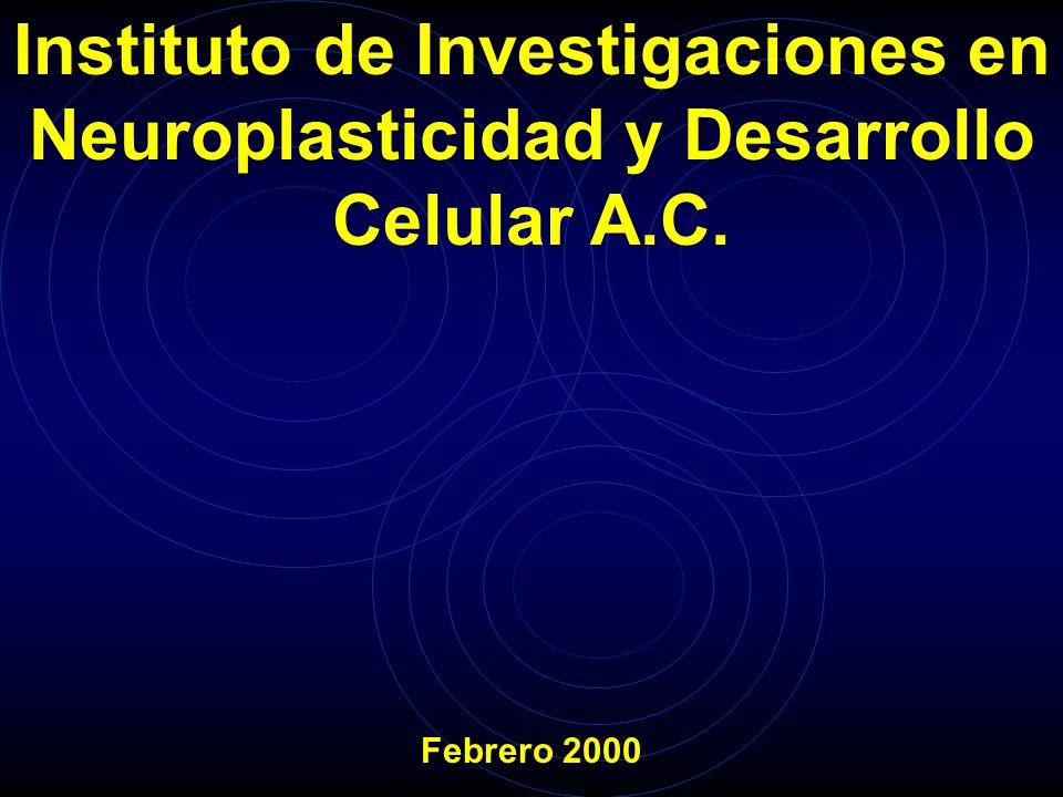 Dr. Raúl Cortés Corona Lic.Ángel Landa Ventosa Sr. Benjamín Doshner Flores Dra. María del Consuelo Uribe Rea Dra. Claudia Quiriarte Cisneros Dr. Ubald
