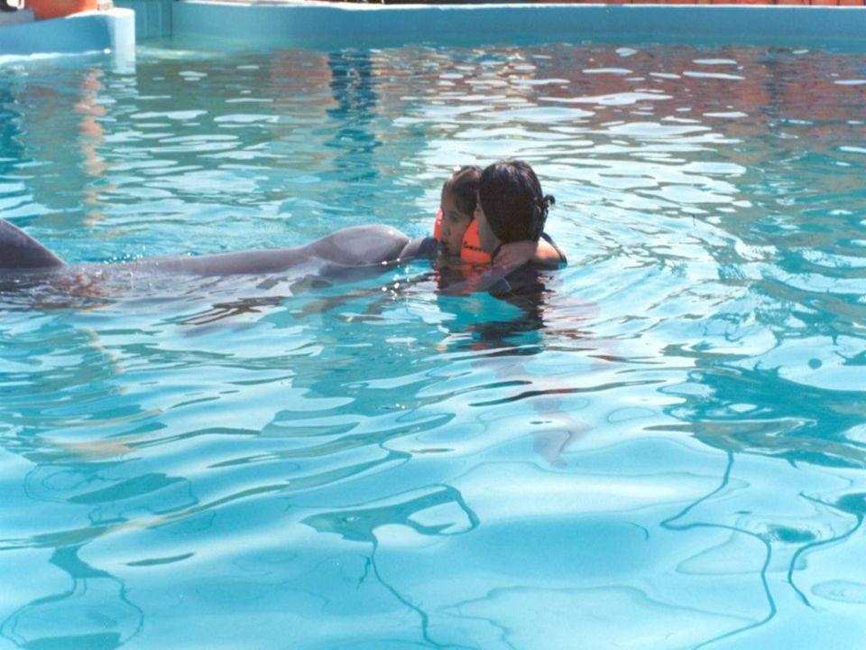 En un programa de terapia asistida por delfines (TAD) con 12 semanas de interacción se observó mejoría en la confianza y autoestima de niños con síndr