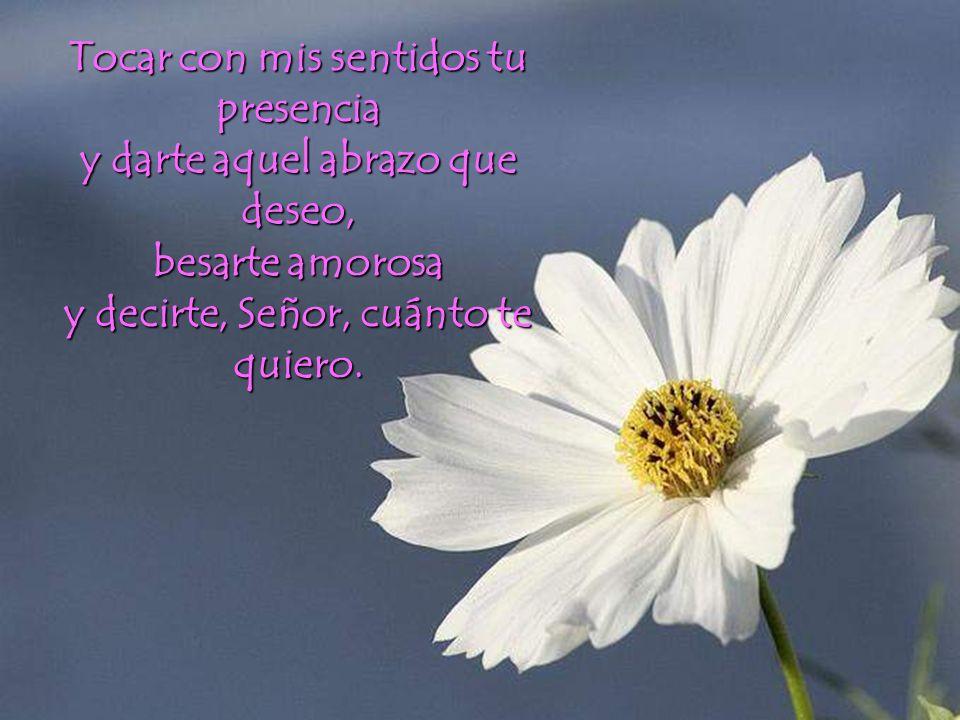 Tocar con mis sentidos tu presencia y darte aquel abrazo que deseo, besarte amorosa y decirte, Señor, cuánto te quiero.