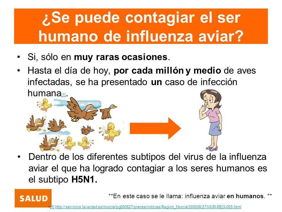 ¿Se puede contagiar el ser humano de influenza aviar? Si, sólo en muy raras ocasiones. Hasta el día de hoy, por cada millón y medio de aves infectadas