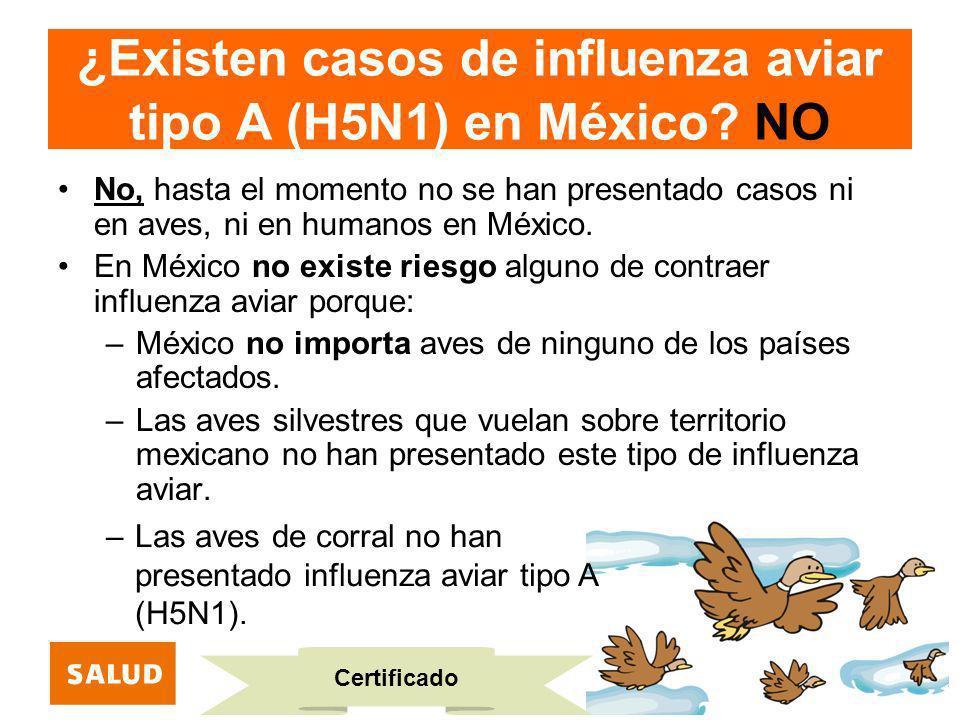 ¿Existen casos de influenza aviar tipo A (H5N1) en México? NO No, hasta el momento no se han presentado casos ni en aves, ni en humanos en México. En