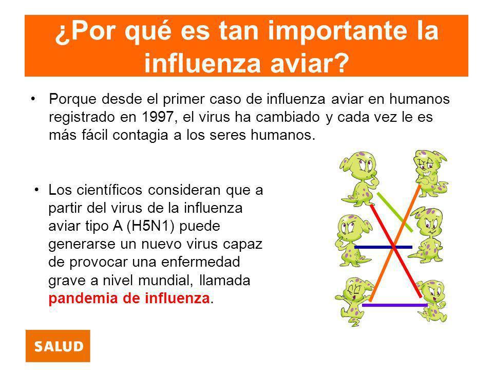 ¿Por qué es tan importante la influenza aviar? Porque desde el primer caso de influenza aviar en humanos registrado en 1997, el virus ha cambiado y ca