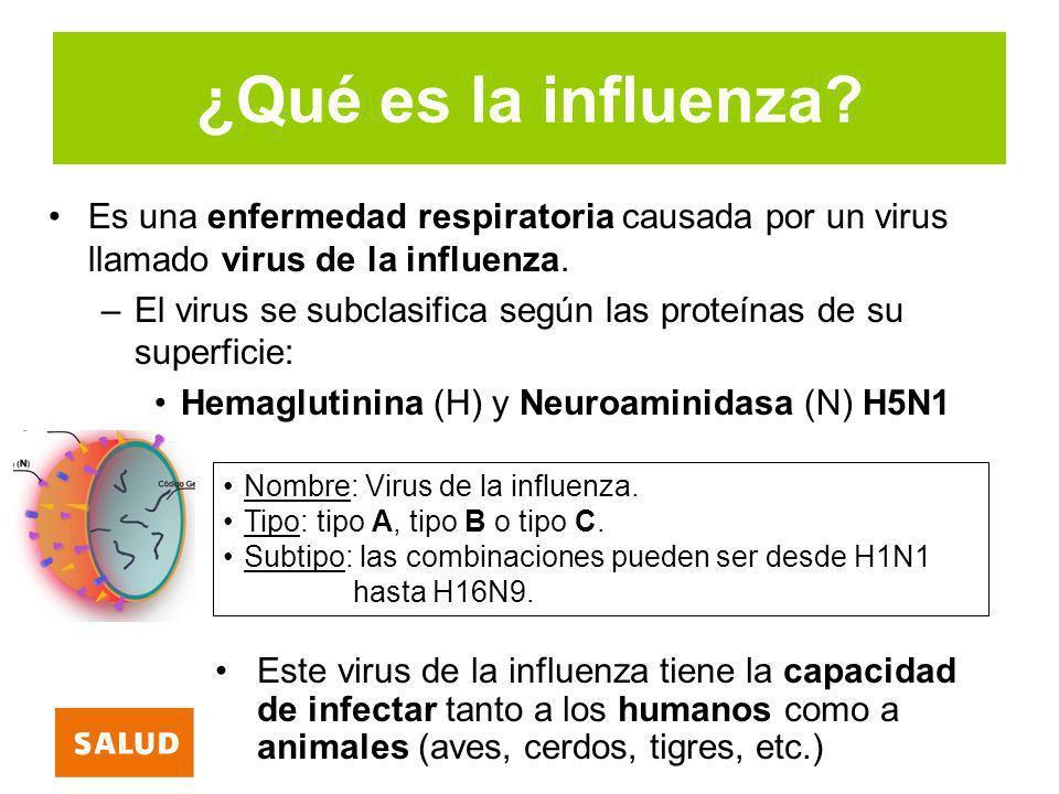 ¿Qué es la influenza? Es una enfermedad respiratoria causada por un virus llamado virus de la influenza. –El virus se subclasifica según las proteínas