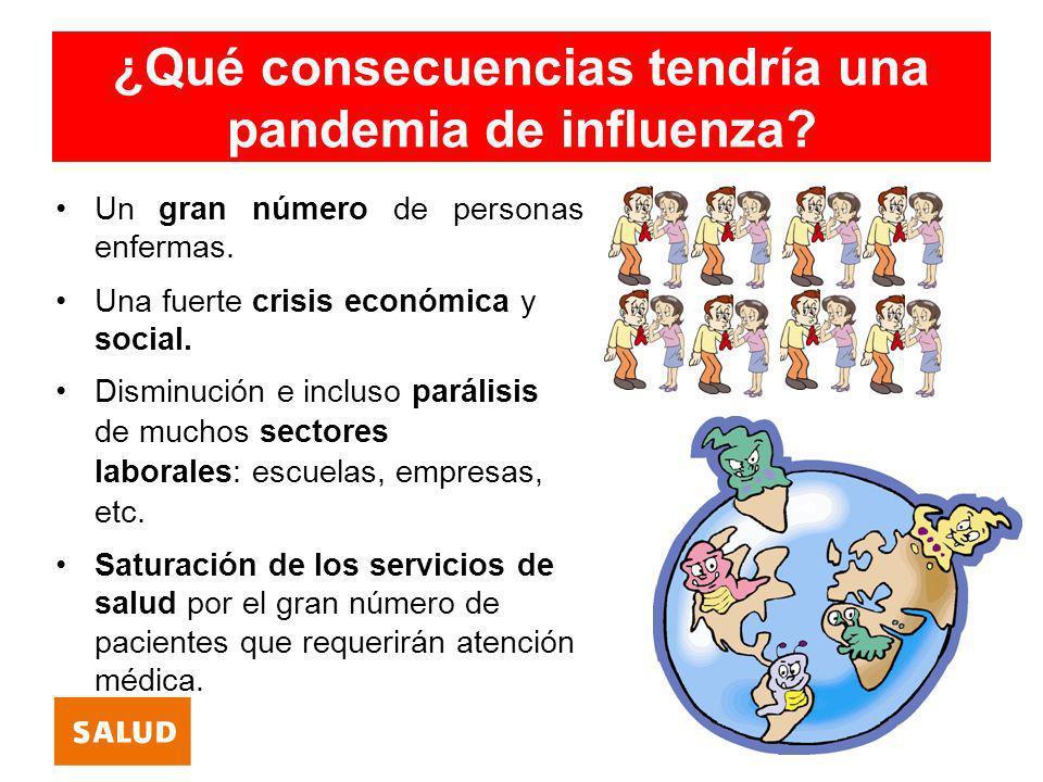 ¿Qué consecuencias tendría una pandemia de influenza? Un gran número de personas enfermas. Una fuerte crisis económica y social. Disminución e incluso