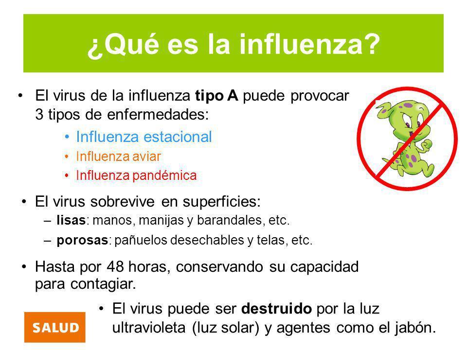 ¿Se puede contagiar el ser humano con influenza aviar.